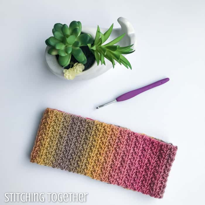 colorful crochet headband next to succulent and crochet hook
